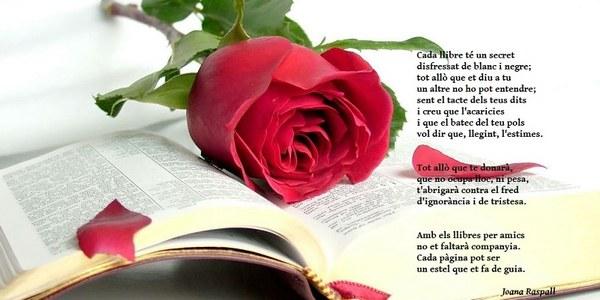 La rosa més original